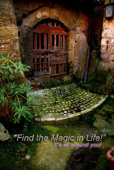 Find the magic!